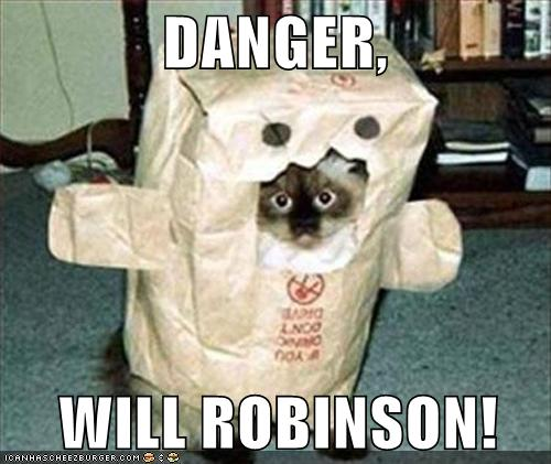 danger-cat.jpg (500×421)